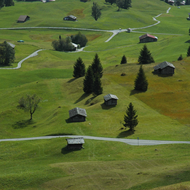 """Valley Meadows, Switzerland"" stock image"