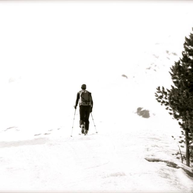 """Cross Country Ski Solitude"" stock image"