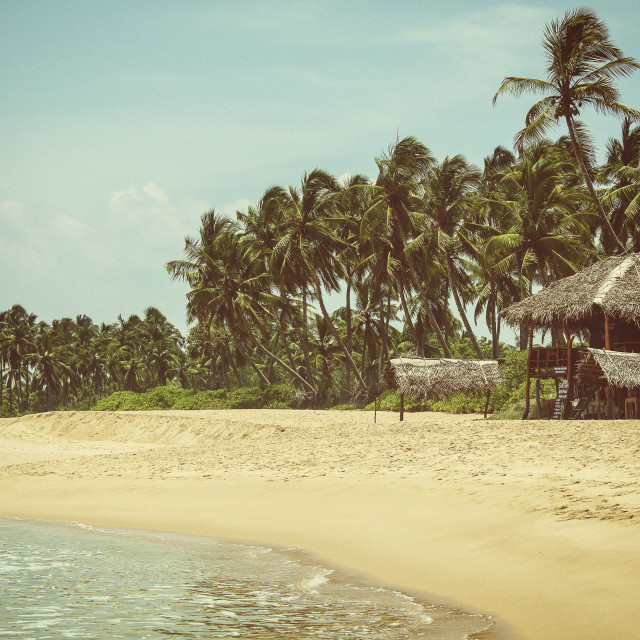 """Tropical beach in South Sri Lanka"" stock image"