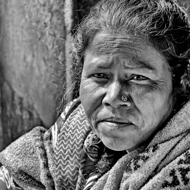 """BIKANER WOMAN"" stock image"