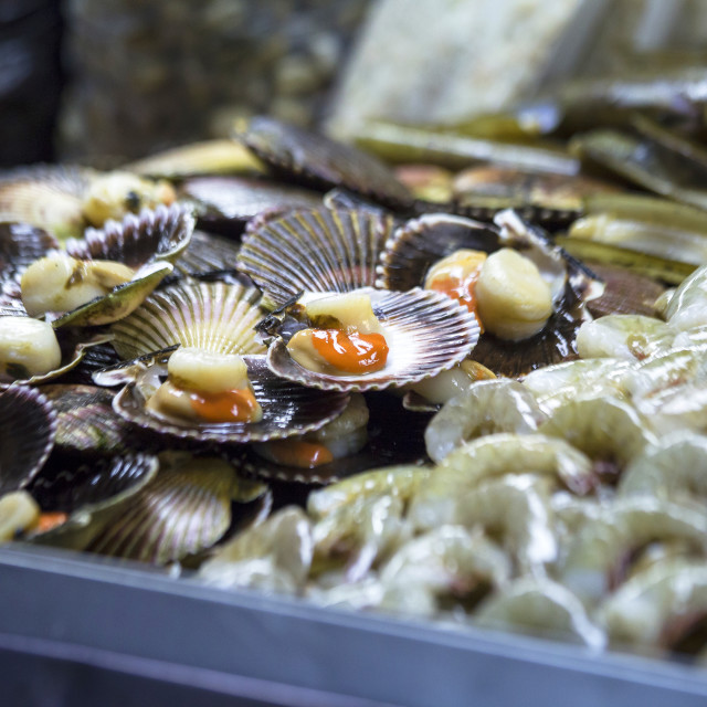 """Market stall selling fresh scallops"" stock image"