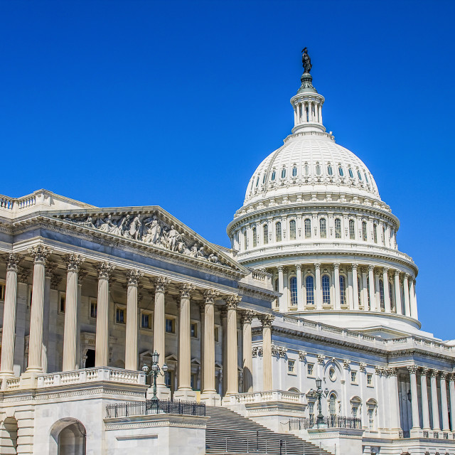 """""""Capitol in Washington"""" stock image"""