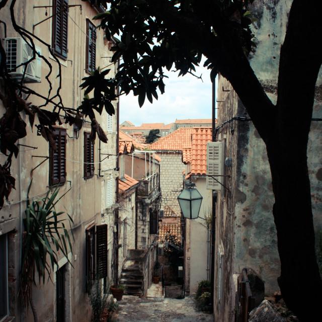 """Dubrovnik Streets"" stock image"