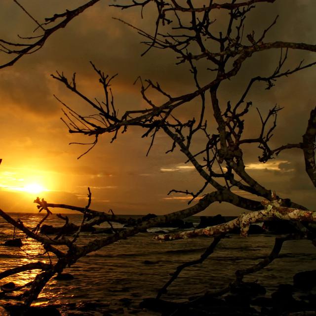 """Sunset at Wediombo"" stock image"