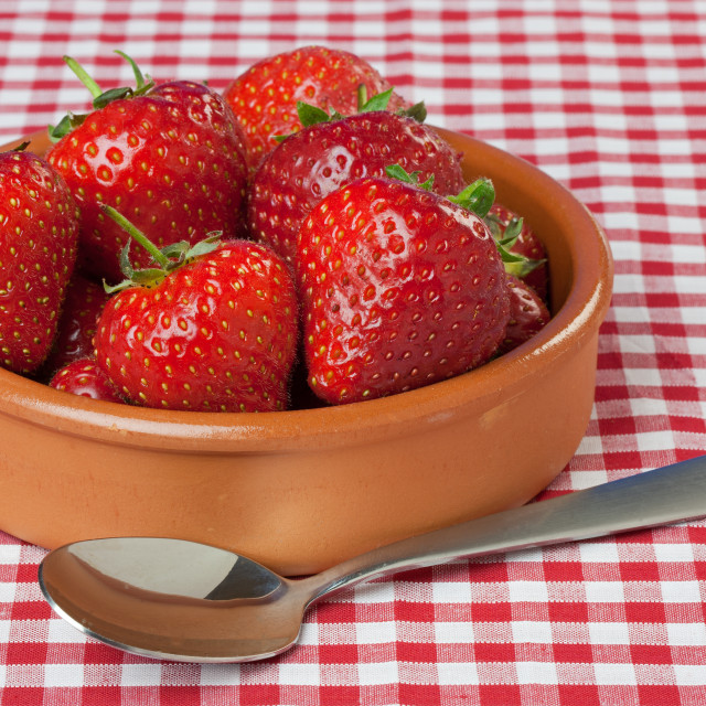 """Dish of Strawberries on Red Gingham Tablecloth"" stock image"