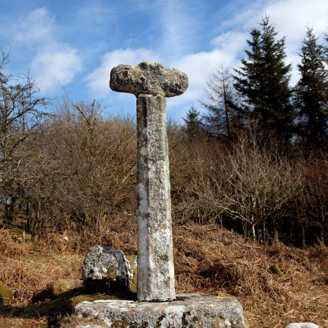 """Ancient Dartmoor Cross"" stock image"