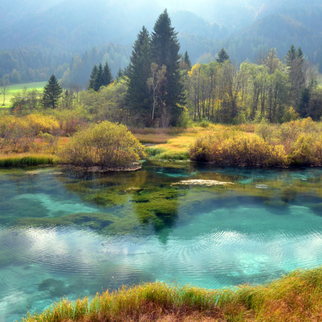 """Zelenci - The Source of Sava Dolinka"" stock image"