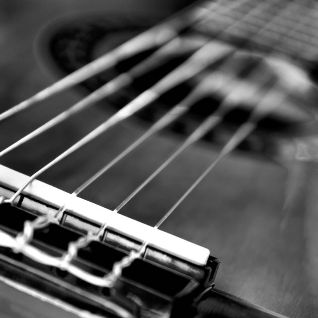 """Guitar in b/w"" stock image"