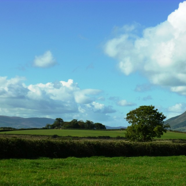 """Irish countryside"" stock image"
