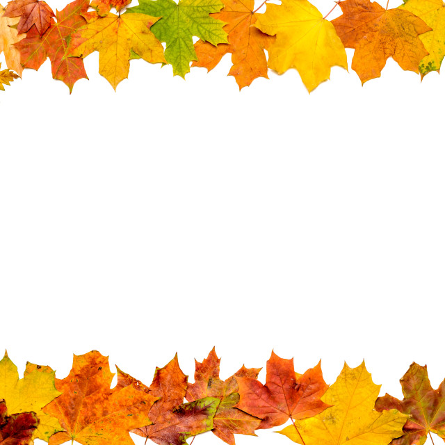 """Autumn Leaves Frame (alla sides)"" stock image"