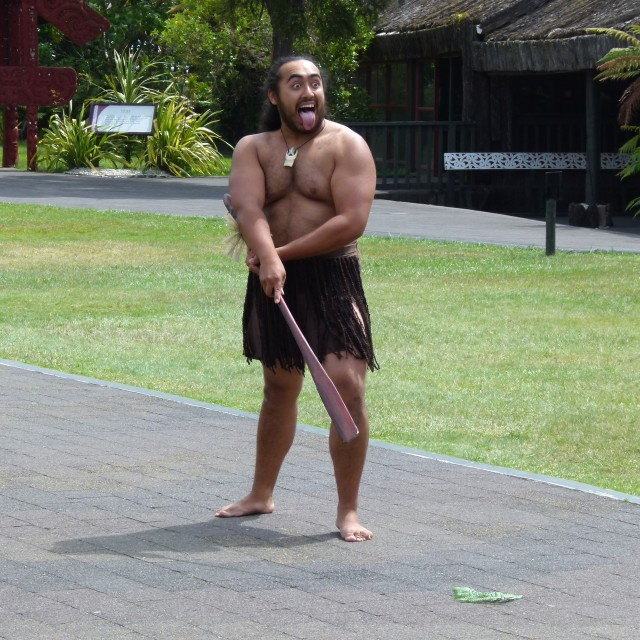 """Haka challenge (part 1)"" stock image"