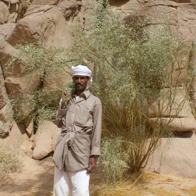 """Bedouin Sinai"" stock image"