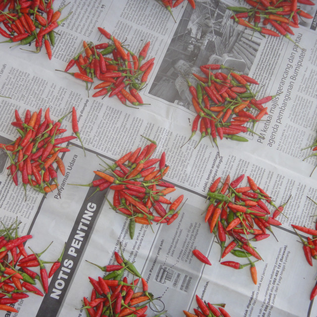 """Chilli Paper"" stock image"