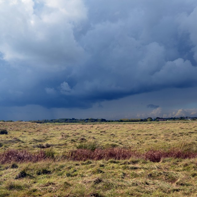 """Storm over the marsh"" stock image"