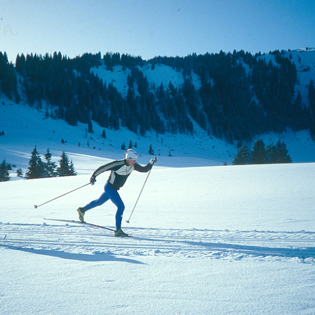 """cross country skiing"" stock image"