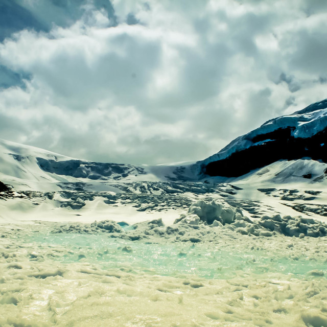 """Columbia Icefield"" stock image"
