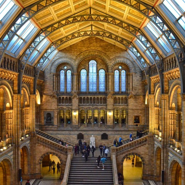 """Main Hall British Museum of Natural History"" stock image"