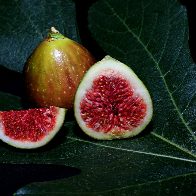 """Figs"" stock image"