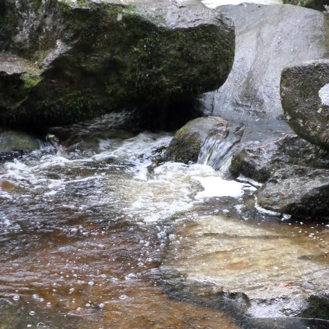 """River in the Rain"" stock image"