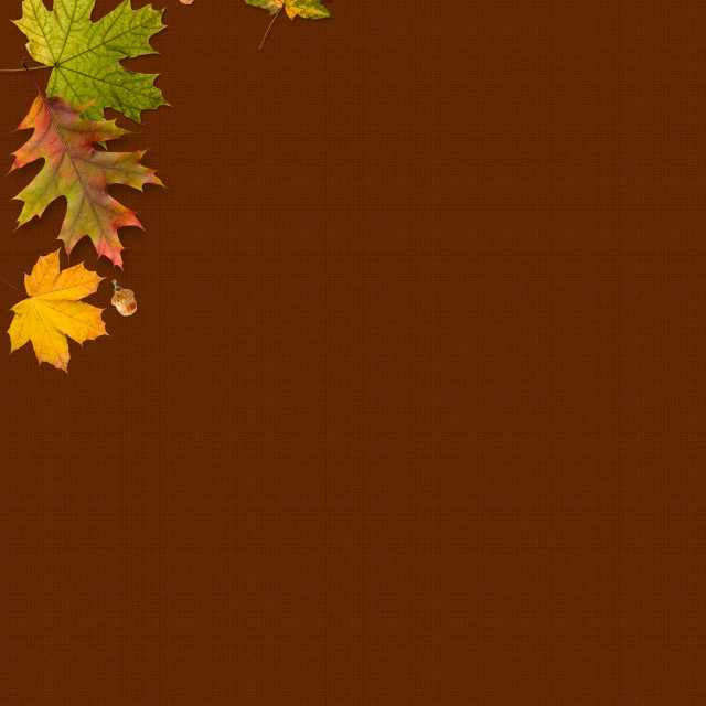 """Autumn Leaves Frame"" stock image"