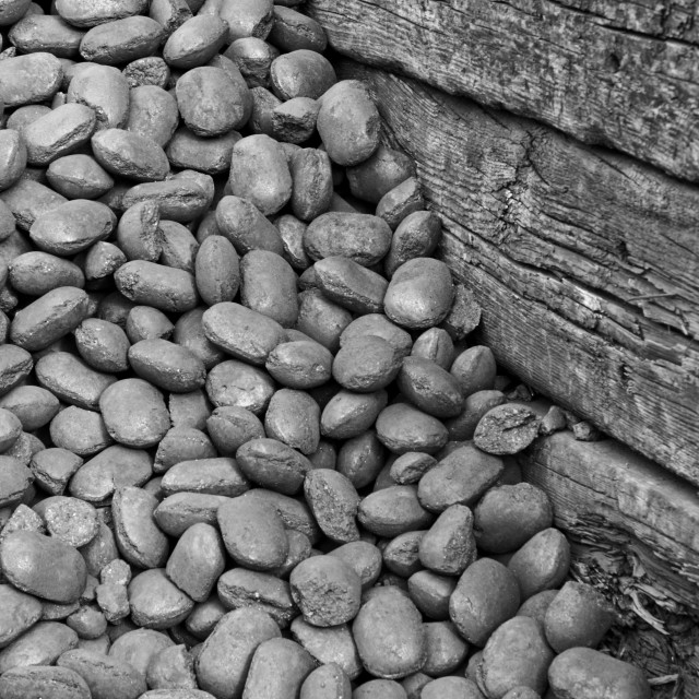 """""""Coal Storage"""" stock image"""