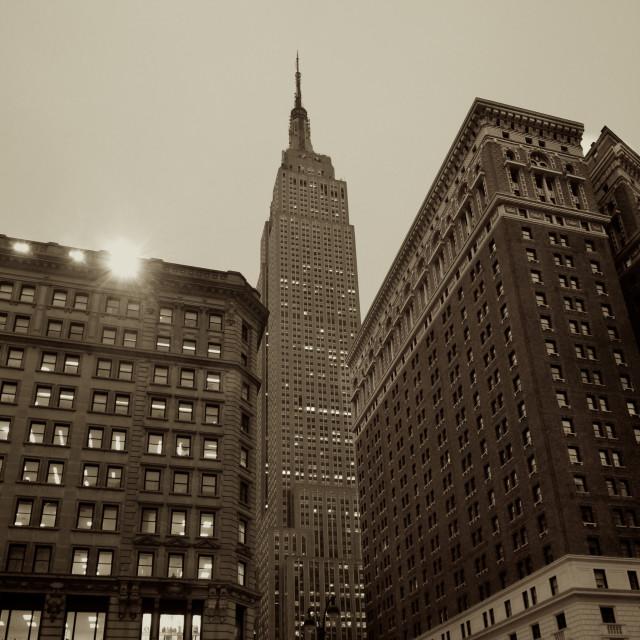 """New York Empire State Sepia"" stock image"