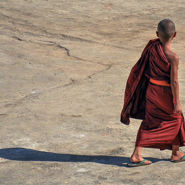 """""""young monk"""" stock image"""