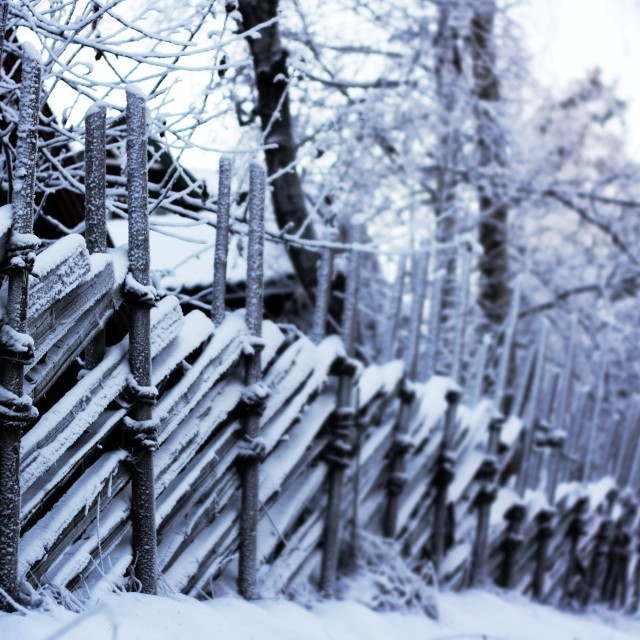 """""""Wooden fence covered in snow"""" stock image"""