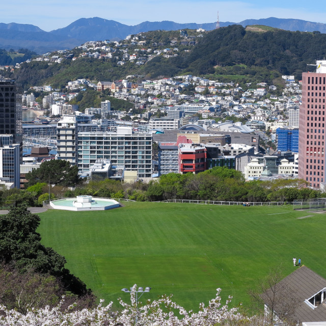 """Wellington, New Zealand."" stock image"