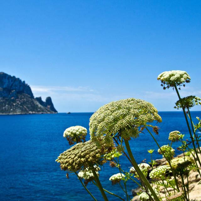 """""""Ibiza coast"""" stock image"""