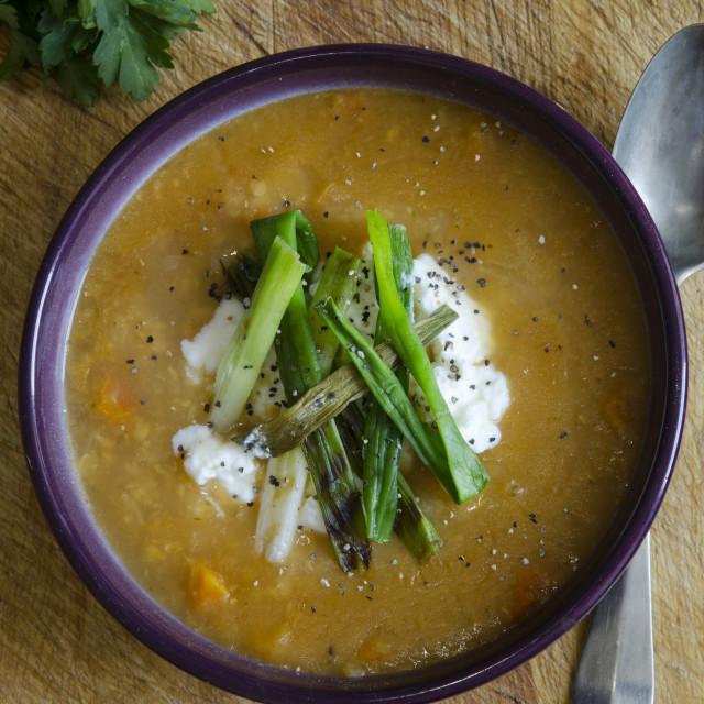 """""""Lentil Soup"""" stock image"""