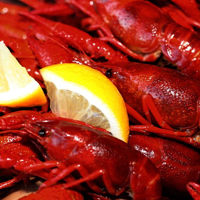 """Crawfish and lemon snack"" stock image"