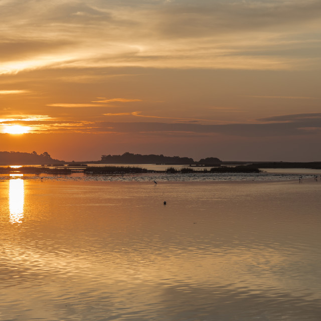 """Cedar Key Sunrise"" stock image"