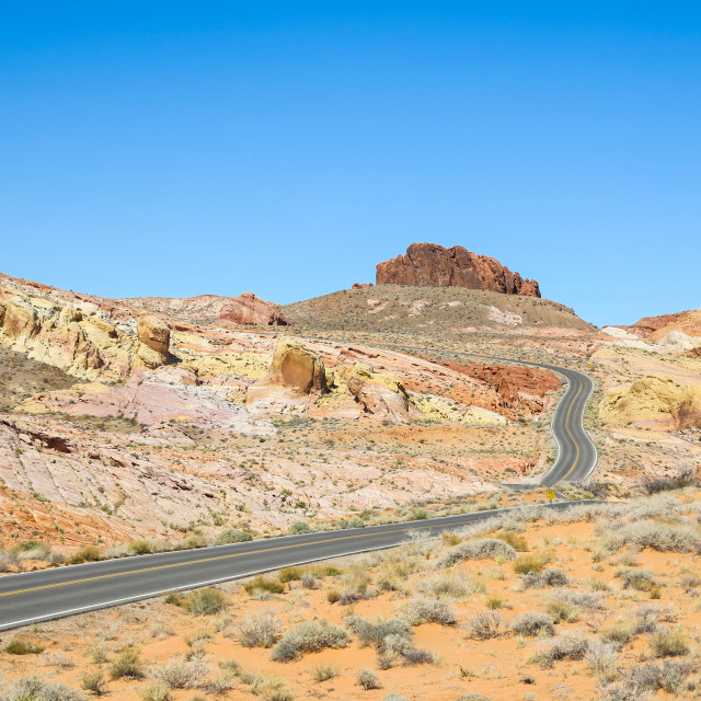 """""""Road through the Valley of Fire, USA"""" stock image"""