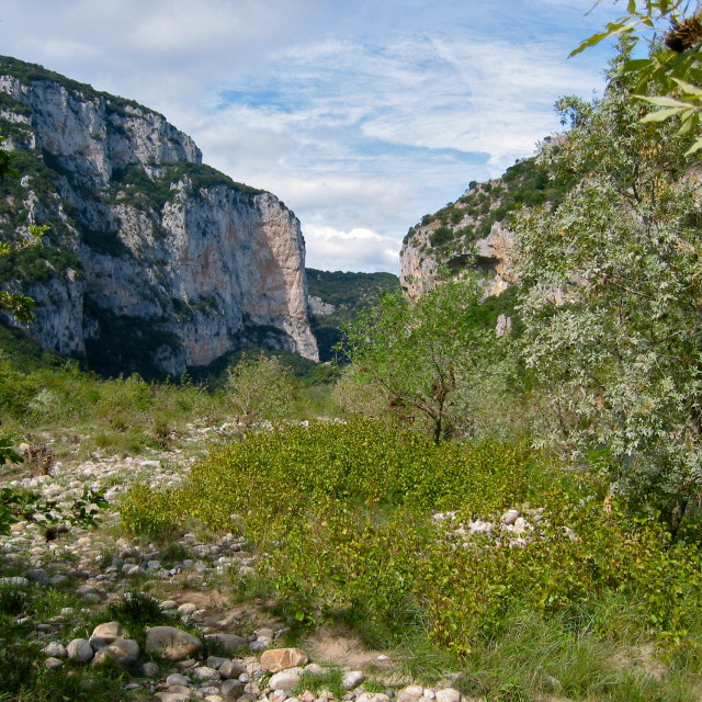 """""""Riverbed in Southern France"""" stock image"""