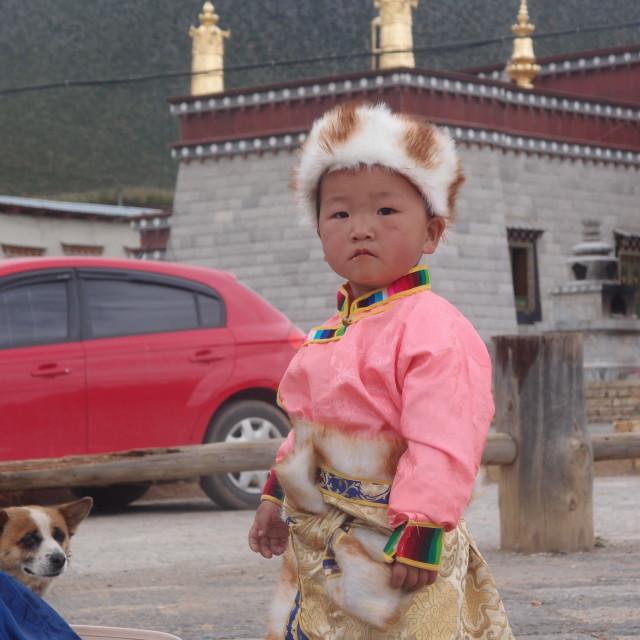 """Child, dog & temple"" stock image"