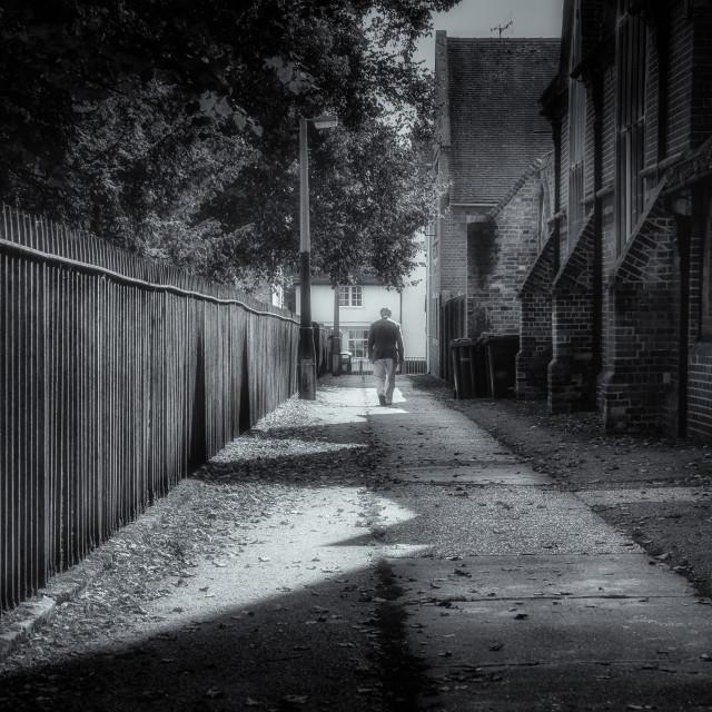 """""""Leafy Lane"""" stock image"""