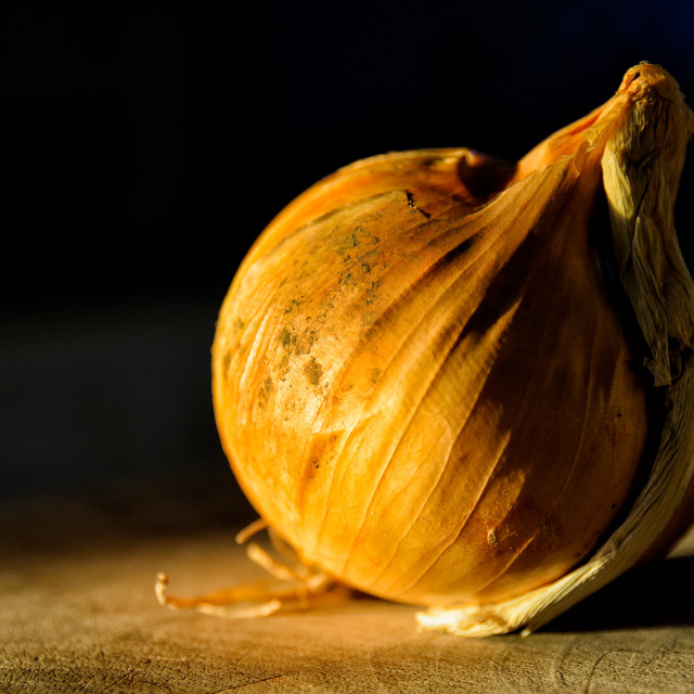 """Onion"" stock image"