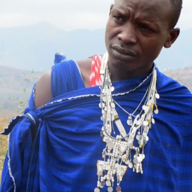 """Masai warrior (1)"" stock image"