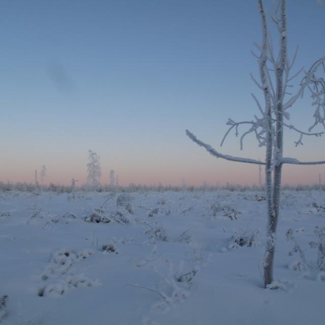 """Finnish landscape"" stock image"