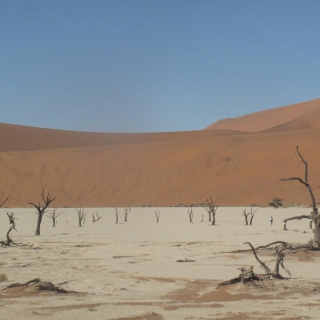 """""""Namibian desert dunes"""" stock image"""