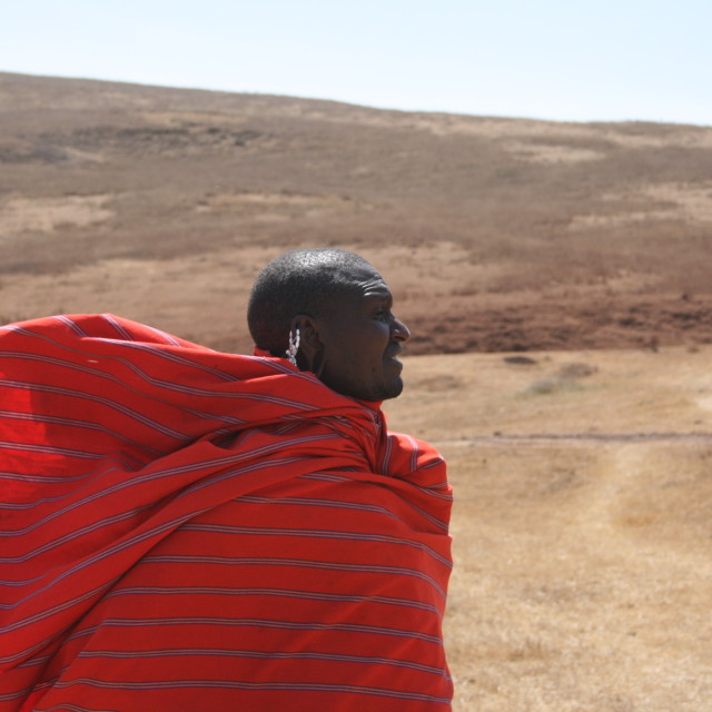 """Masai warrior walking in the wind"" stock image"