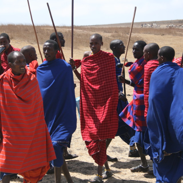 """Masai warriors in Africa"" stock image"