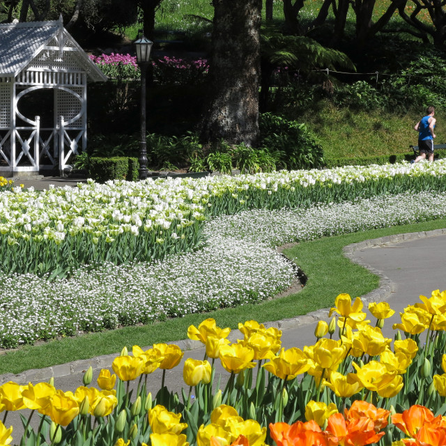 """""""Spring in the park"""" stock image"""