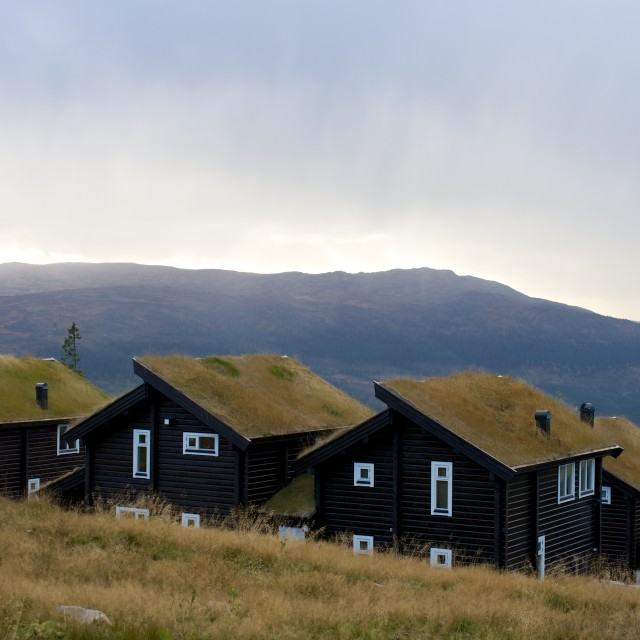 """Grass roofed mountain cottages"" stock image"