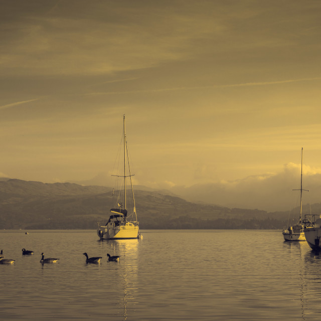 """Windermere Sunrise"" stock image"