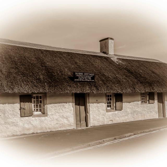 """""""Burns Cottage"""" stock image"""