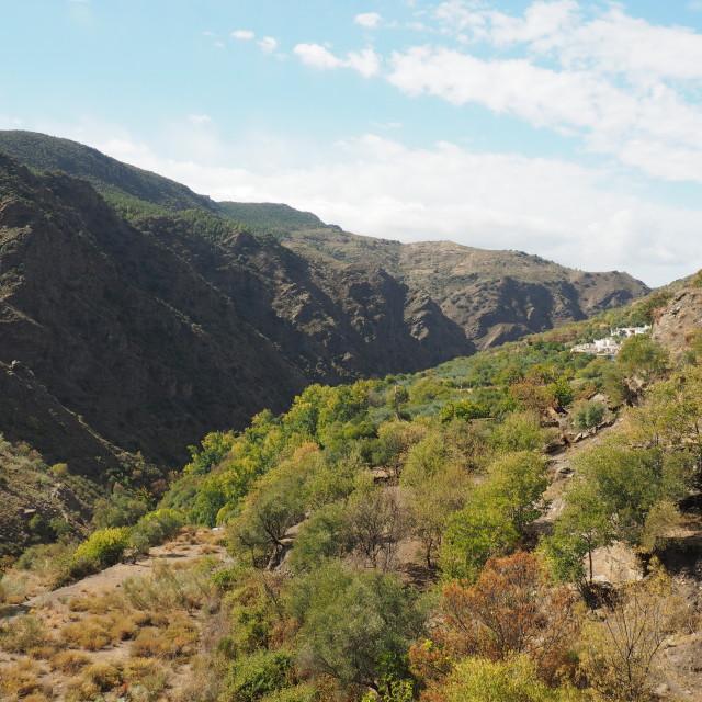 """Valley of the Rio Trevelez, Alpujarras"" stock image"