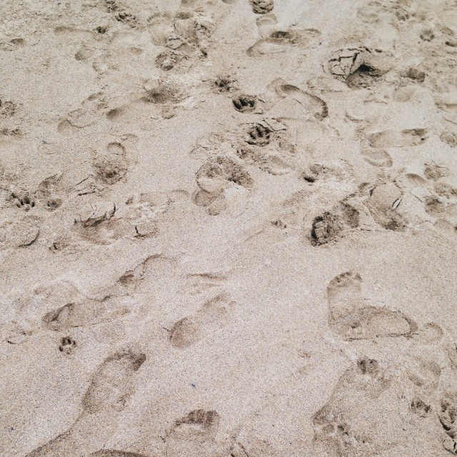 """Foot prints"" stock image"