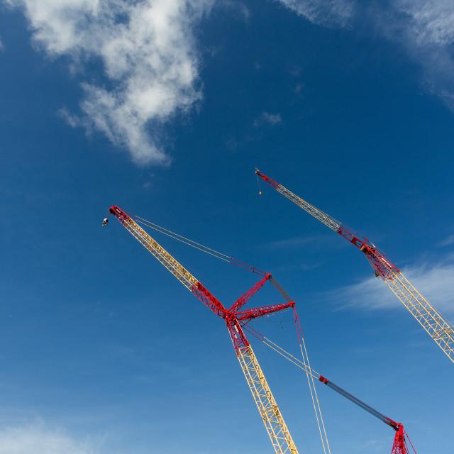 """Building Cranes"" stock image"